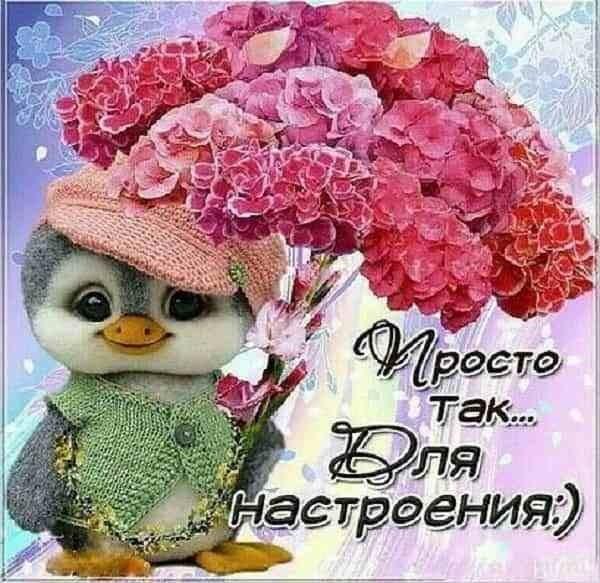Пожелания доброго утра013
