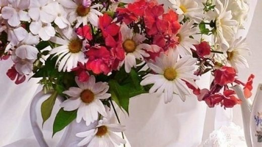 Пожелания с добрым утром в картинках018