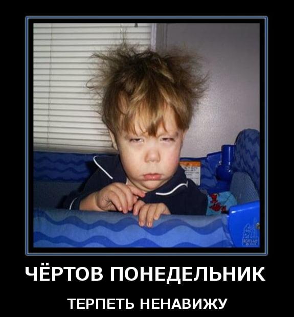 Понедельник снова в школу прикольные картинки (9)