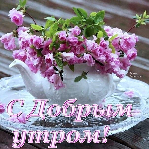 Прекрасные картинки с пожеланием доброго утра004