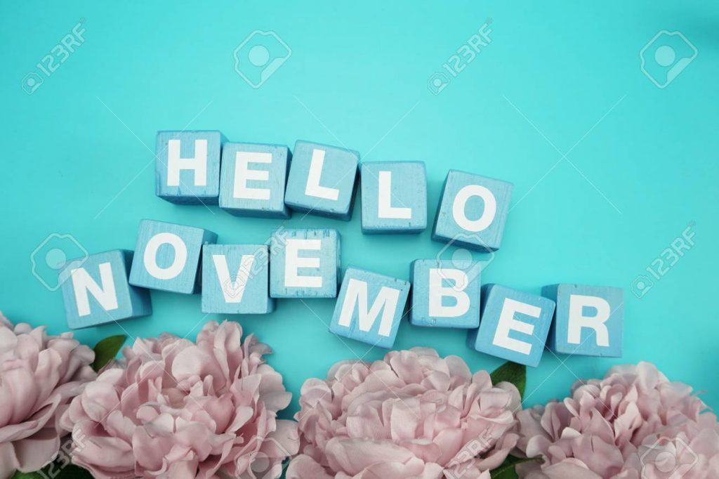 hello november alphabet letters with flower bouquet on blue background