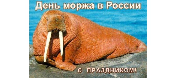 Прикольные картинки на День моржа в России (7)