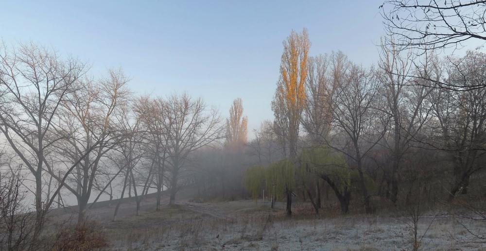 Прикольные картинки про утро ноября (15)