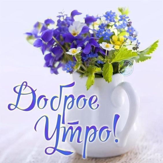 Прикольные открытки с пожеланием доброго утра005