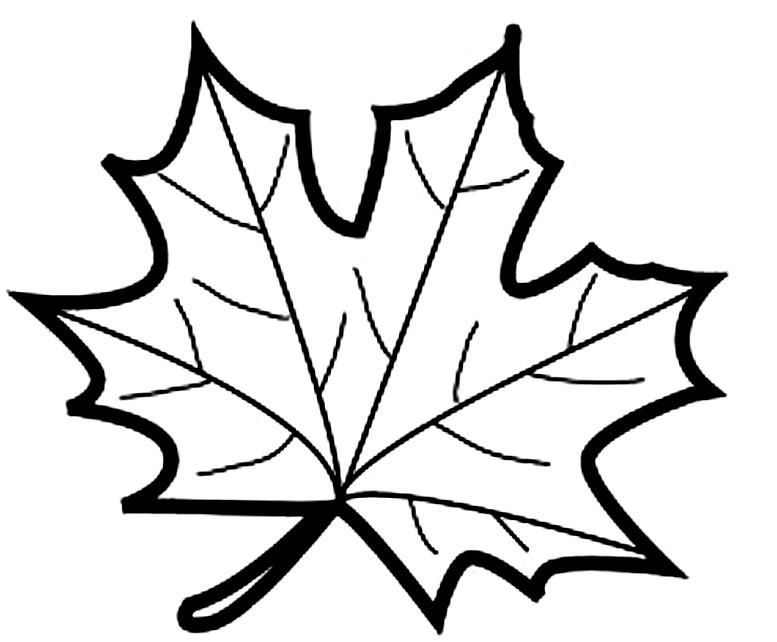 картинка раскраска осенний лист создавать