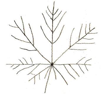 Рисунки как нарисовать осенний лист карандашом (23)