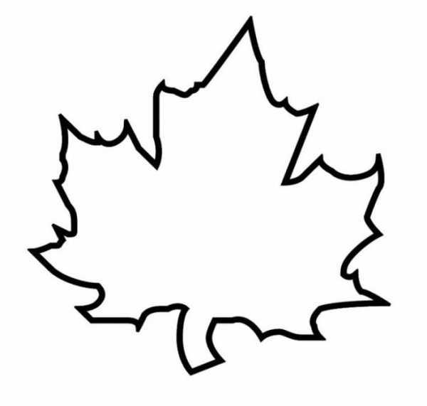 Рисунки как нарисовать осенний лист карандашом (26)