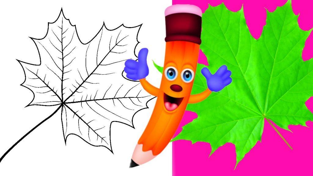 Рисунки как нарисовать осенний лист карандашом (5)