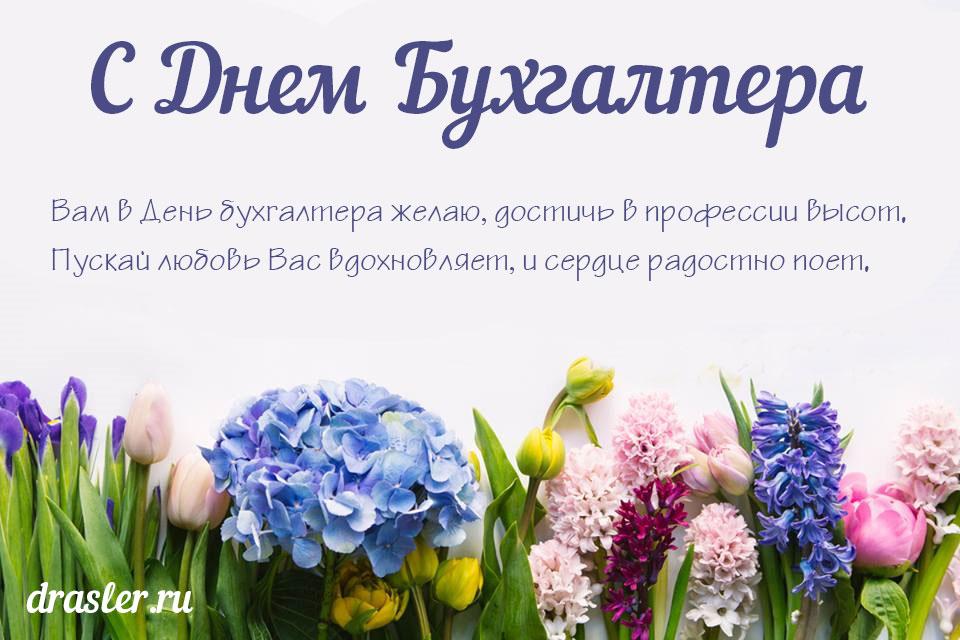 С днем бухгалтера в России открытки красивые - подборка (7)
