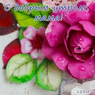 С добрым утром, мама 021