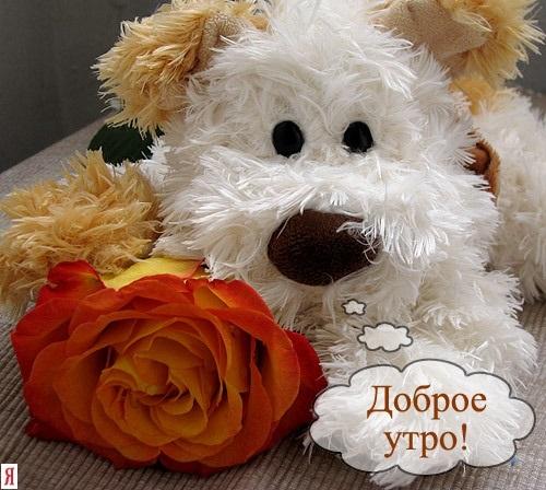 С добрым утром милые открытки009
