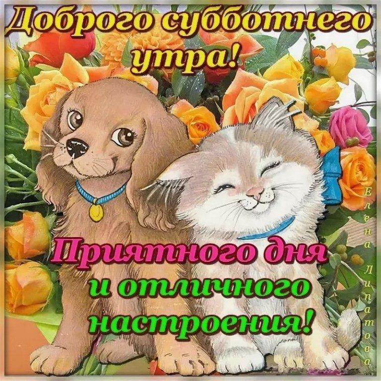 С добрым утром суббота милые и позитивные открытки (20)