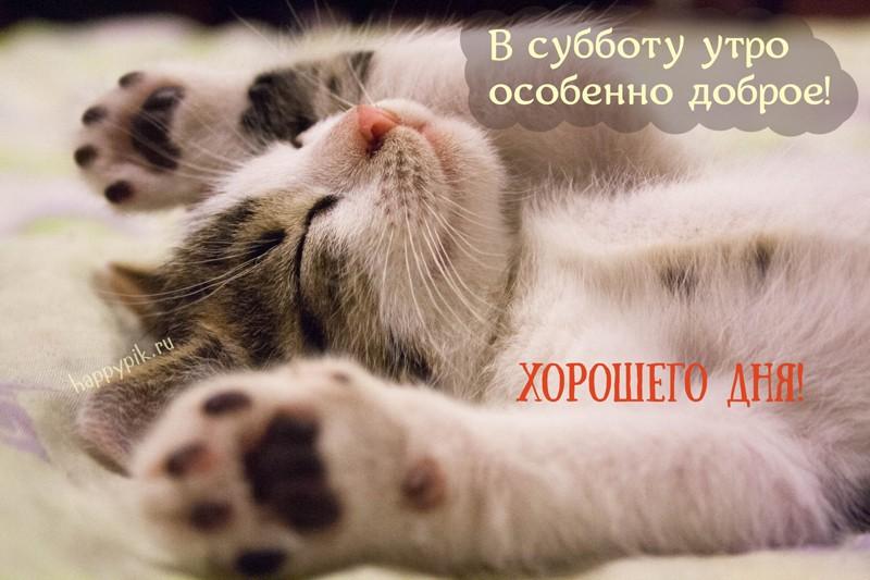 С добрым утром суббота милые и позитивные открытки (9)
