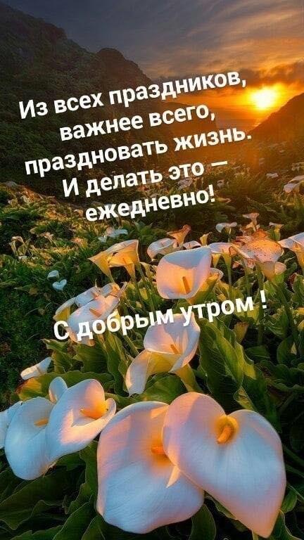С добрым утром  красивые картинки019