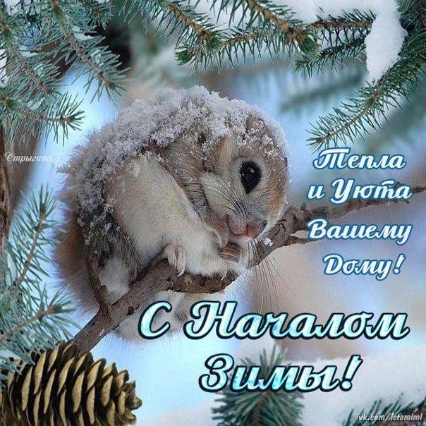 С началом зимы картинки и открытки (18)