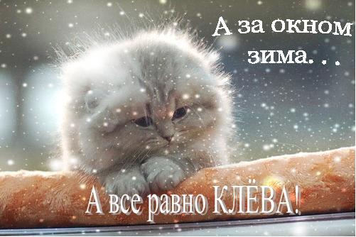 С началом зимы картинки и открытки (5)