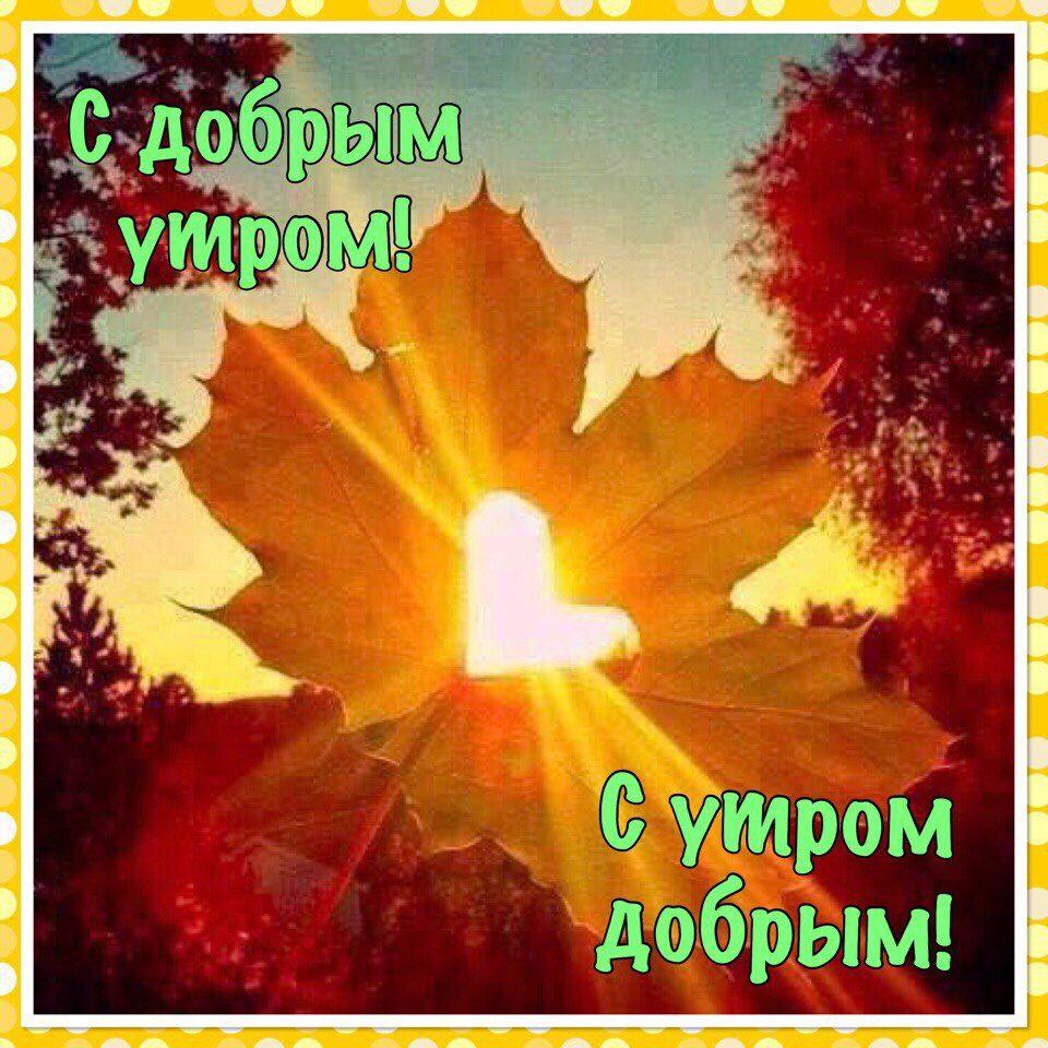 Теплого тебе осеннего утра красочные открытки (10)