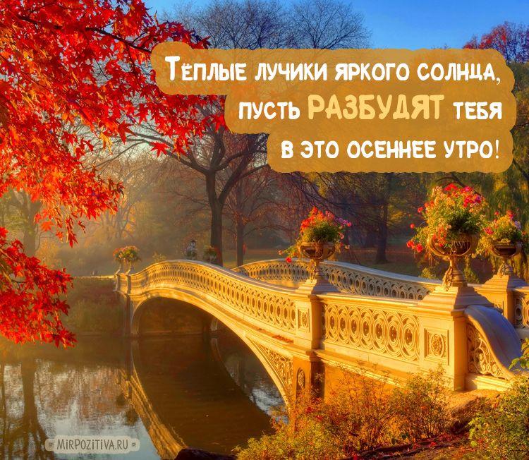 Теплого тебе осеннего утра красочные открытки (12)
