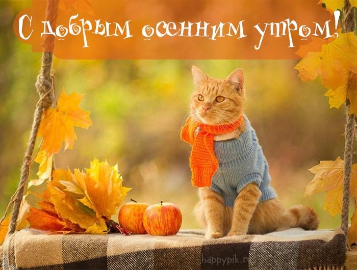 Теплого тебе осеннего утра красочные открытки (3)