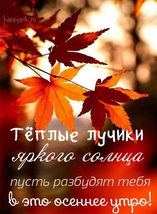 Теплого тебе осеннего утра красочные открытки (5)