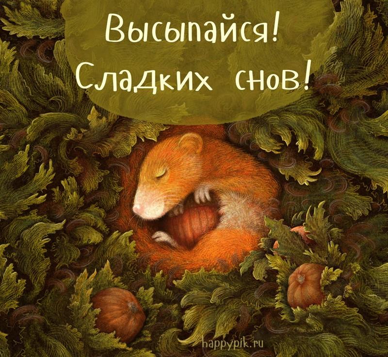 Открытки спокойной ночи сладких снов веселые осенние