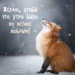 Удивительные открытки с теплым добрым зимним утром