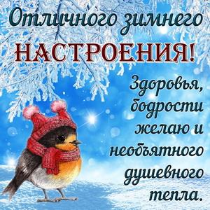 Удивительные открытки с теплым добрым зимним утром (5)
