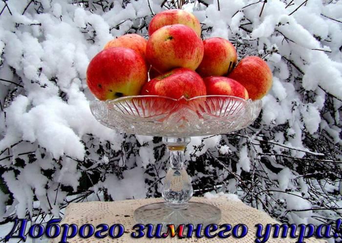 Удивительные открытки с теплым добрым зимним утром (8)