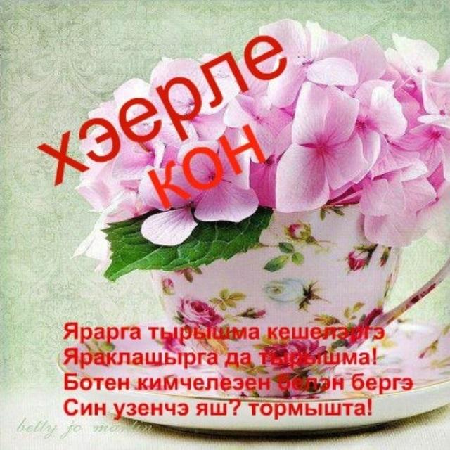 доброе утро картинки необычные красивые прикольные по татарские краснолистная известна