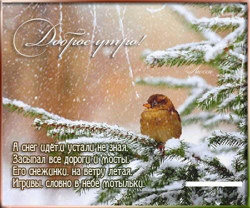 Зима с добрым утром картинки и открытки (10)