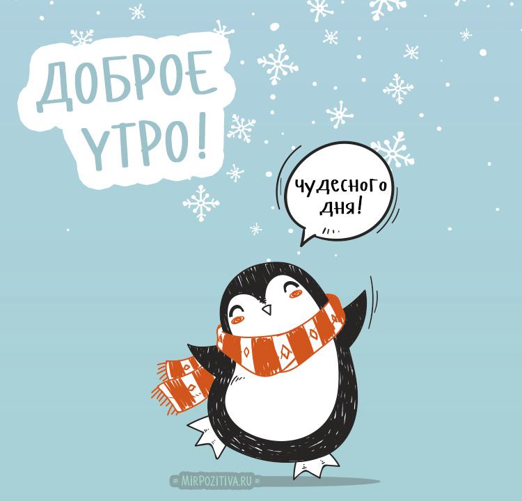 Красивые зимние картинки доброе утро (1)