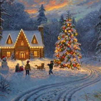 Красивые картинки для новогоднего настроения (15)