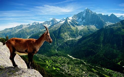 Красивые картинки на Международный день гор (10)