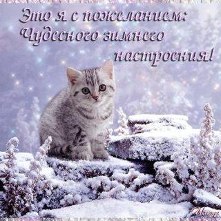 Красивые картинки с добрым снежным утром (6)