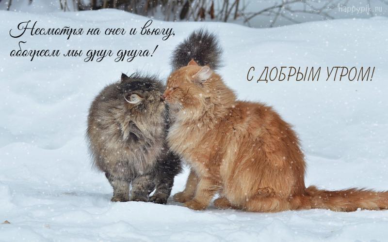 Красивые картинки с добрым снежным утром (8)