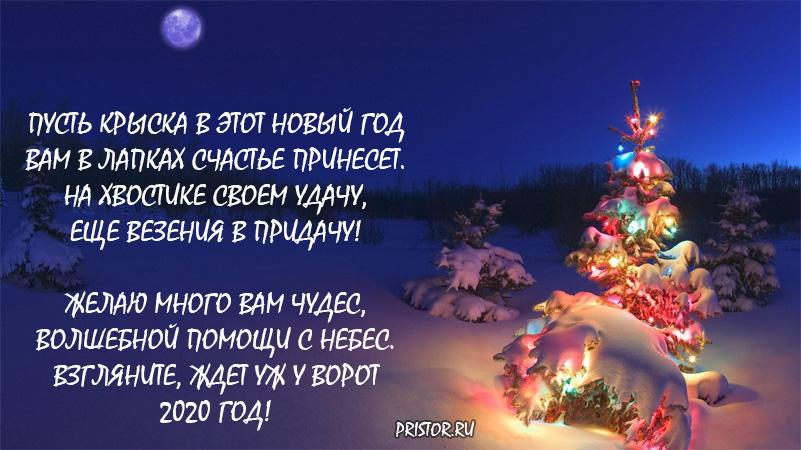 Красивые стихи на Новый год 2020 (год крысы) (2)