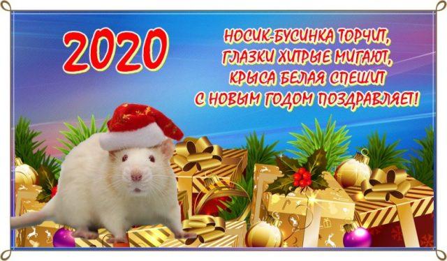 Милые Новогодние открытки в лучшем качестве (8)