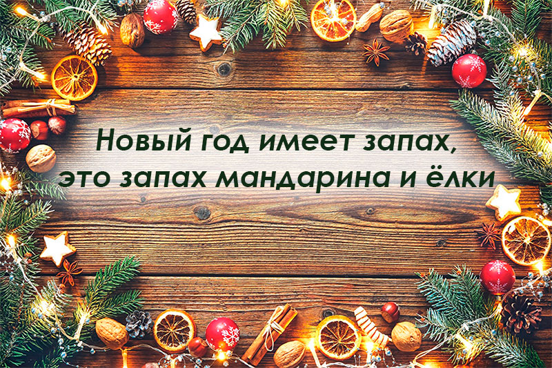невероятно милые картинки с цитатами на новый год основном, располагают
