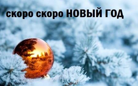 Скоро Новый год 2020 - прикольные картинки (8)