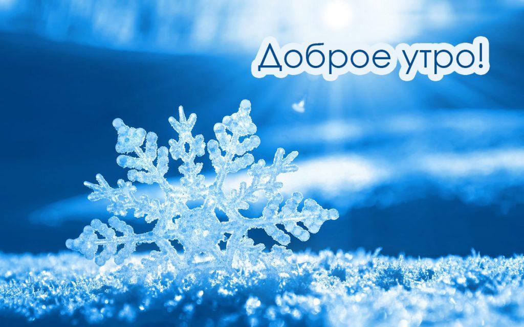 С добрым утром картинки зима (10)