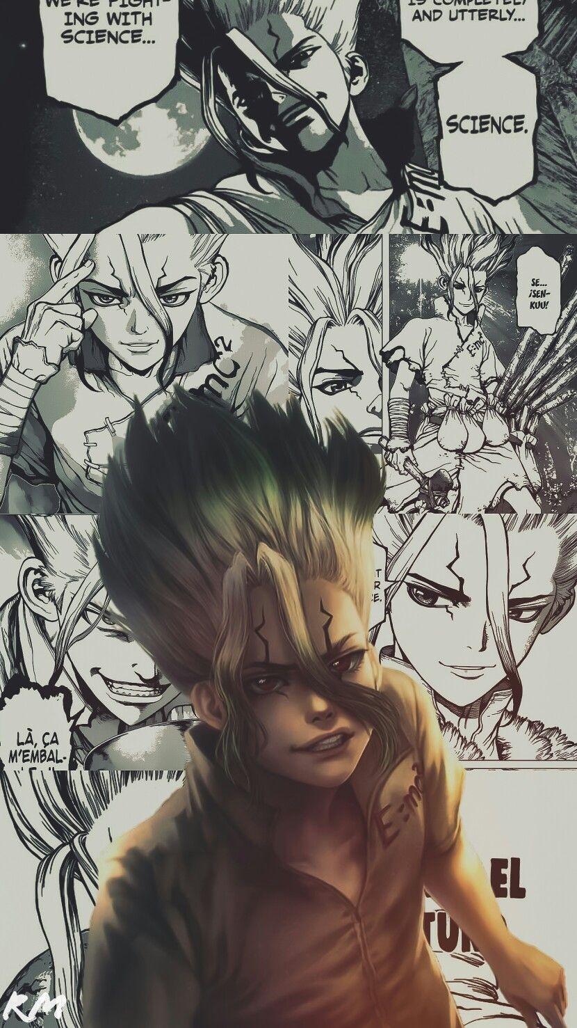 Доктор Стоун Dr. Stone красивые арты и картинки из аниме (1)