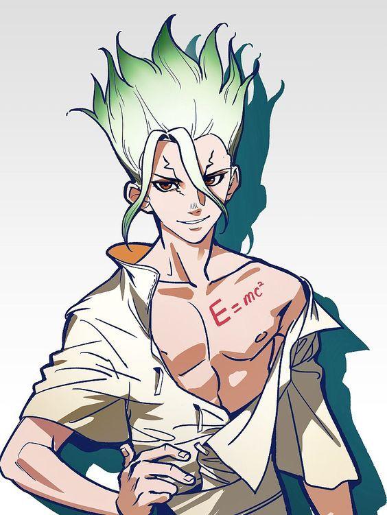 Доктор Стоун Dr. Stone красивые арты и картинки из аниме (22)