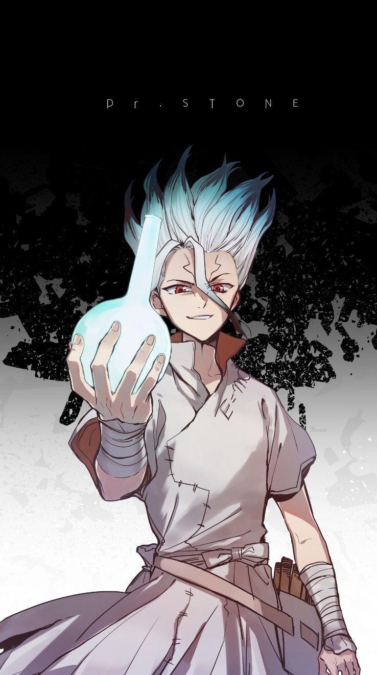 Доктор Стоун Dr. Stone красивые арты и картинки из аниме (7)