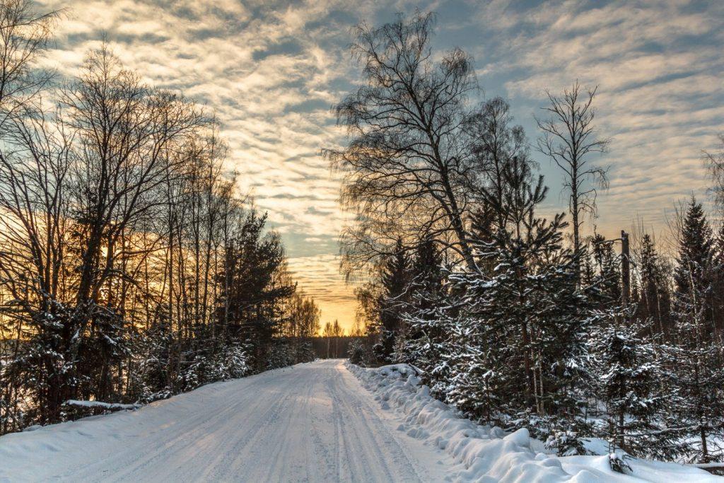 Зимний лес красивые обои для рабочего стола (5)