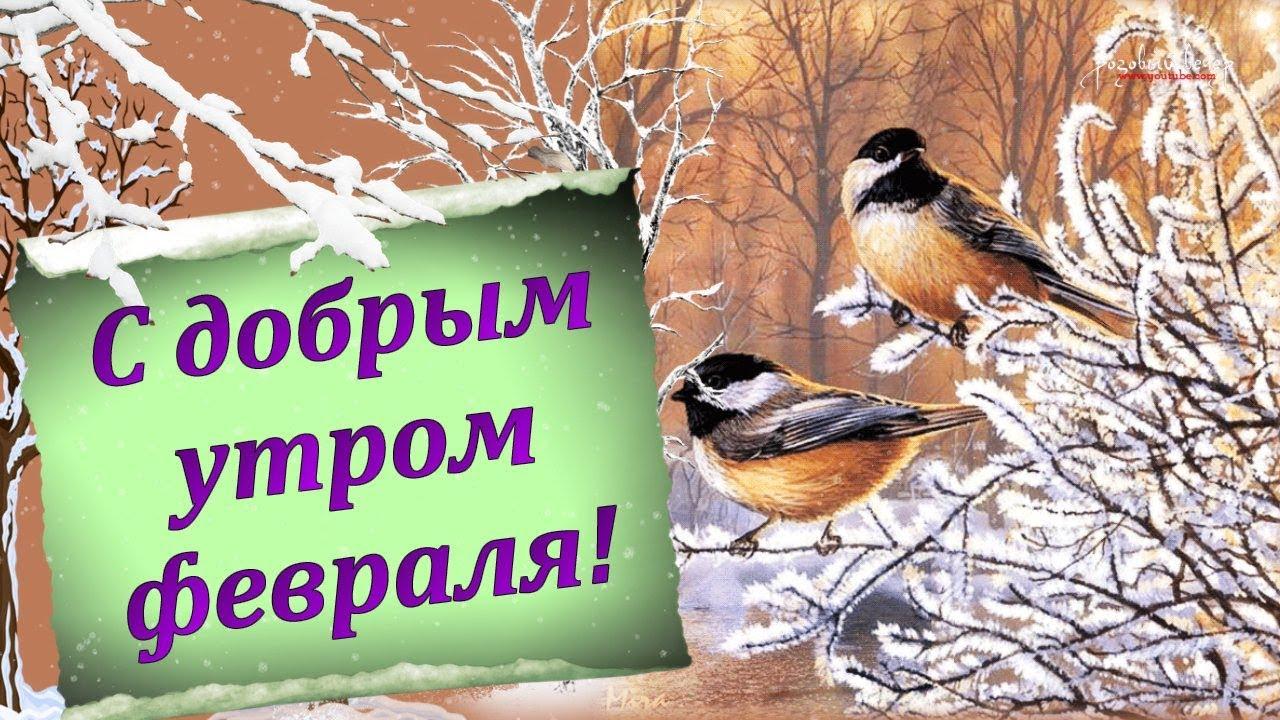 Удивительные картинки с теплым и добрым утром февраля (12)