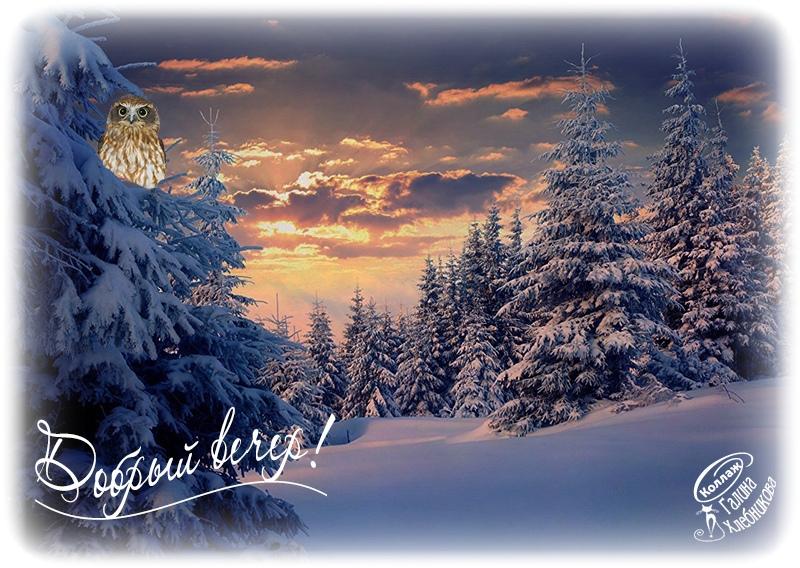 Доброго вечера февраля красивые открытки и картинки (1)