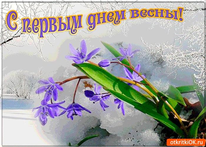 Картинки на 1 день весны - милые поздравления для близких (14)