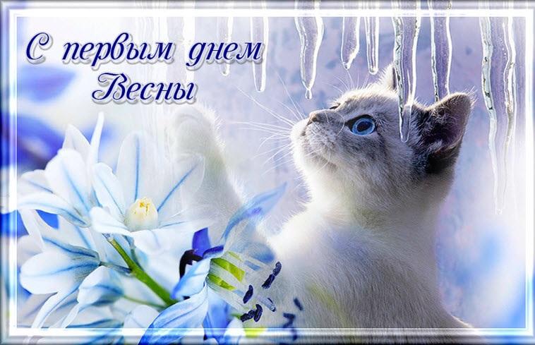 Картинки на 1 день весны - милые поздравления для близких (2)