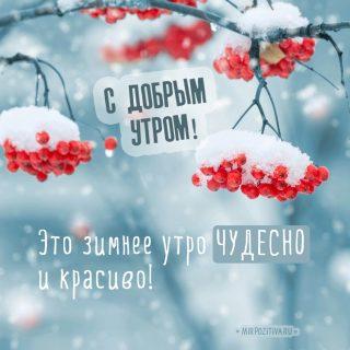Красивые картинки с добрым и чудесным утром февраля (5)