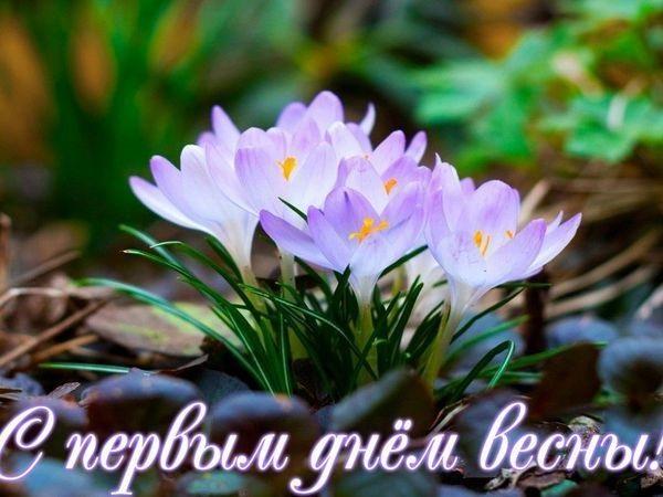 Красивые картинки с первым днем весны - подборка (17)